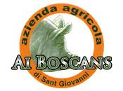 Azienda Agricola ai Boscans - Logo aziendale