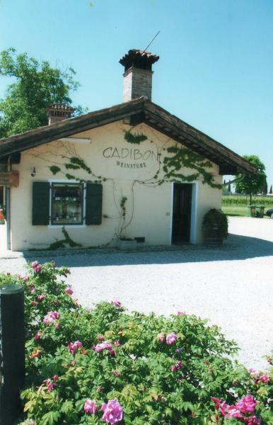 Galleria fotografica di Azienda Agricola Ca di Bon