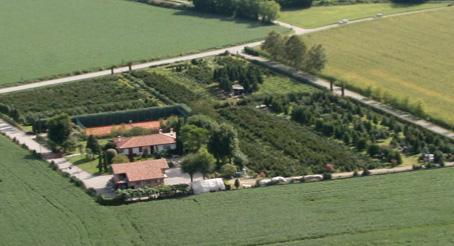 Galleria fotografica di Azienda Agricola Marangone