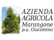 Azienda Agricola Marangone - Logo aziendale
