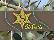 Azienda Agricola Stefani - Olistella - Logo aziendale