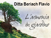 Beriach Flavio - Logo aziendale