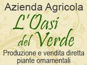 L'Oasi del verde - Logo aziendale