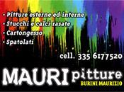 Mauri Pitture - Logo aziendale