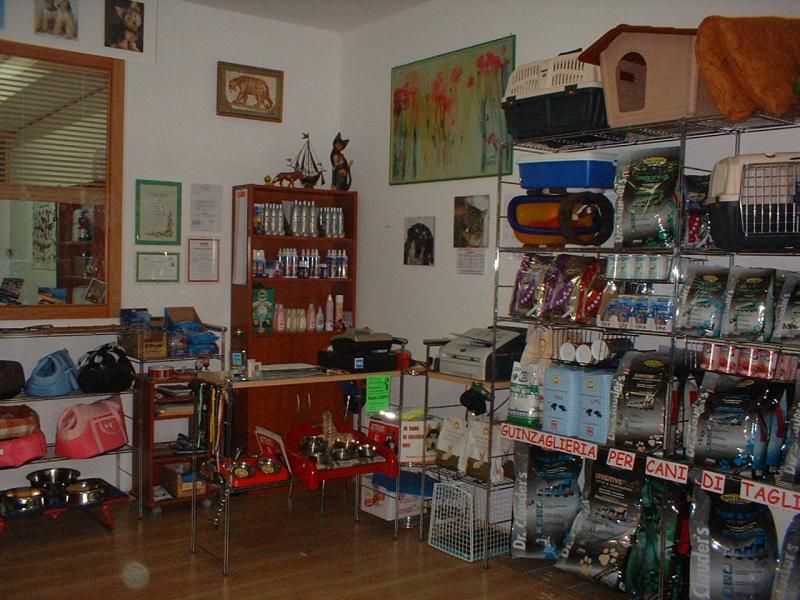 Galleria fotografica di Toelettatura Cani e Gatti - Cave Canem
