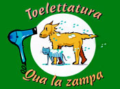 Toelettatura QUA LA ZAMPA - Logo aziendale