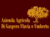 Az. Agr. Di Gaspero Flavia ed Umberto - Logo aziendale