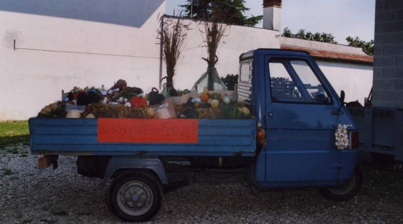 Galleria fotografica di Azienda Agricola Ermacora Achille